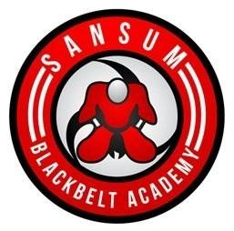 Active Kids Classes at Sansum BlackBelt Academy